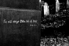 ewige Liebe-neu-klein